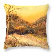 Amber Sunset Throw Pillow