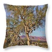 Amboy Shoe Tree By Diana Sainz Throw Pillow
