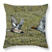 American & Eurasian Wigeons Throw Pillow
