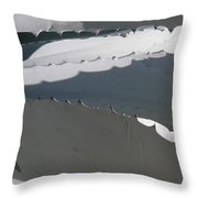 American Agave Throw Pillow