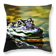 American Alligator 1 Throw Pillow