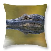 American Alligator Reflection Throw Pillow