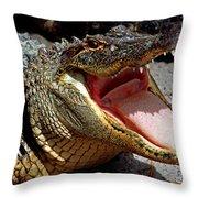 American Alligator Threat Display Throw Pillow