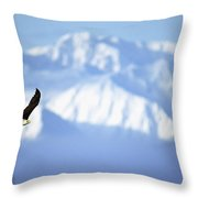 American Bald Eagle In Flight Throw Pillow
