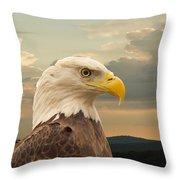 American Bald Eagle With Peircing Eyes Throw Pillow by Douglas Barnett