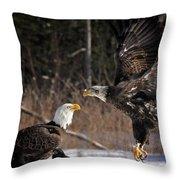 American Bald Eagles Throw Pillow
