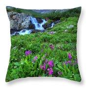 American  Basin Waterfall Throw Pillow