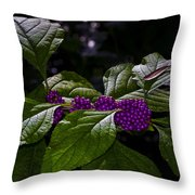 American Beauty Berry II Throw Pillow