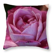 American Beauty IIi Throw Pillow