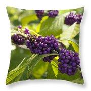American Beautyberry -callicarpa Americana Throw Pillow