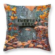 American Beech Throw Pillow