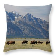 American Bison Herd Throw Pillow