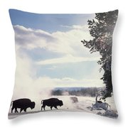 American Bison In Winter Throw Pillow by Tim Fitzharris