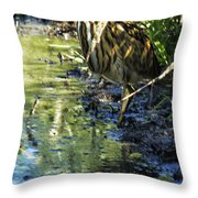 American Bittern - Keeping A Low Profile Throw Pillow