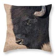 American Buffalo No.2 Throw Pillow