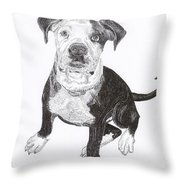 American Bull Dog As A Pup Throw Pillow