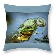 American Bull Frog Throw Pillow