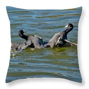 American Coots Fighting Throw Pillow