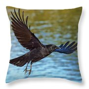 American Crow Flying Over Water Throw Pillow