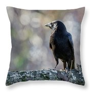 American Crow Square Throw Pillow