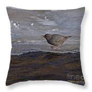 American Dipper   #5851 Throw Pillow