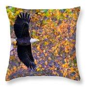 American Eagle In Autumn Throw Pillow