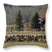 American Elk   #4305 Throw Pillow