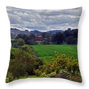 American Farmland 2 Throw Pillow