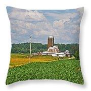 American Farmland 3 Throw Pillow