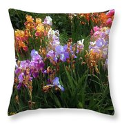 American Giverny Throw Pillow