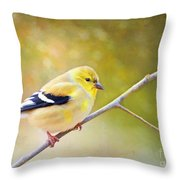 American Goldfinch - Digital Paint Throw Pillow