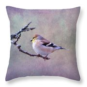American Goldfinch 2 Throw Pillow