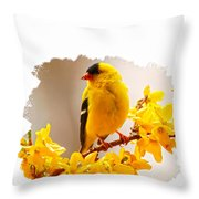 American Goldfinch Branch Of Forsythia Throw Pillow
