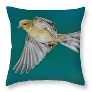 American Goldfinch Hen In Flight Throw Pillow