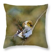 American Goldfinch On A Cedar Twig - Digital Paint Throw Pillow
