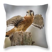 American Kestral Throw Pillow