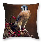American Kestrel II Throw Pillow