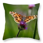 American Lady Butterfly In Garden Throw Pillow