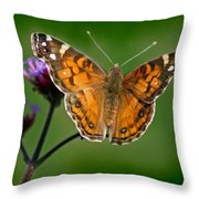 American Lady Butterfly With Green Background Throw Pillow