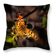American Lady Throw Pillow by Robert Bales