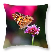 American Painted Lady Butterfly Pink Throw Pillow