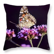 American Painted Lady Butterfly Purple Background Throw Pillow