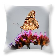 American Painted Lady Butterfly White Square Throw Pillow