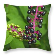 American Pokeweed  Throw Pillow