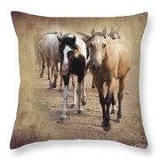 American Quarter Horse Herd Throw Pillow