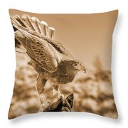American Red Tail Hawk Throw Pillow