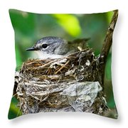 American Redstart Nest Throw Pillow