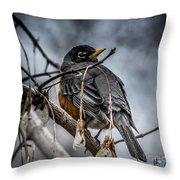 American Robin 2 Throw Pillow