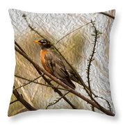 American Robin On A Branch Throw Pillow