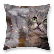 American Shorthair Cat With Holiday Tree Throw Pillow